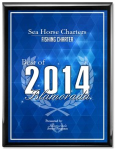 SEA HORSE CHARTERS Receives 2014 Best of Islamorada Award