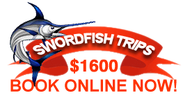 Swordfish Trips! Book online now!